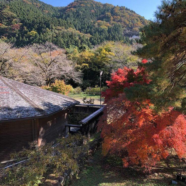 古民家の隠れ宿「神梅館」の四季を感じながら行うヨガ