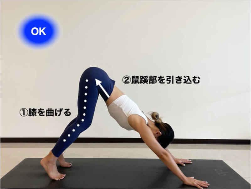 ダウンドッグができない原因②「腰が伸びない・曲がる」の対処法